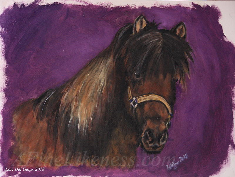 Oil portrait by Lori Del Genis of Ofeigur, a chestnut-colored Icelandic pony. Ofeigur is wearing a yellow halter and looking out at the viewer..