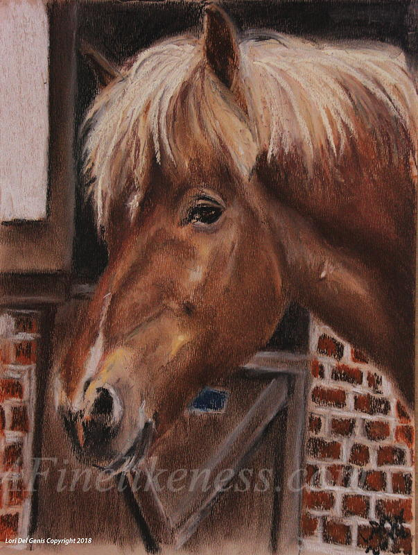 'Stjarni' - Soft pastel portrait by Lori Del Genis of a light brown colored icelandic pony. Stjarni is standing in front of a barn door and looking at the viewer.
